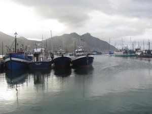 Mooring for sustainability
